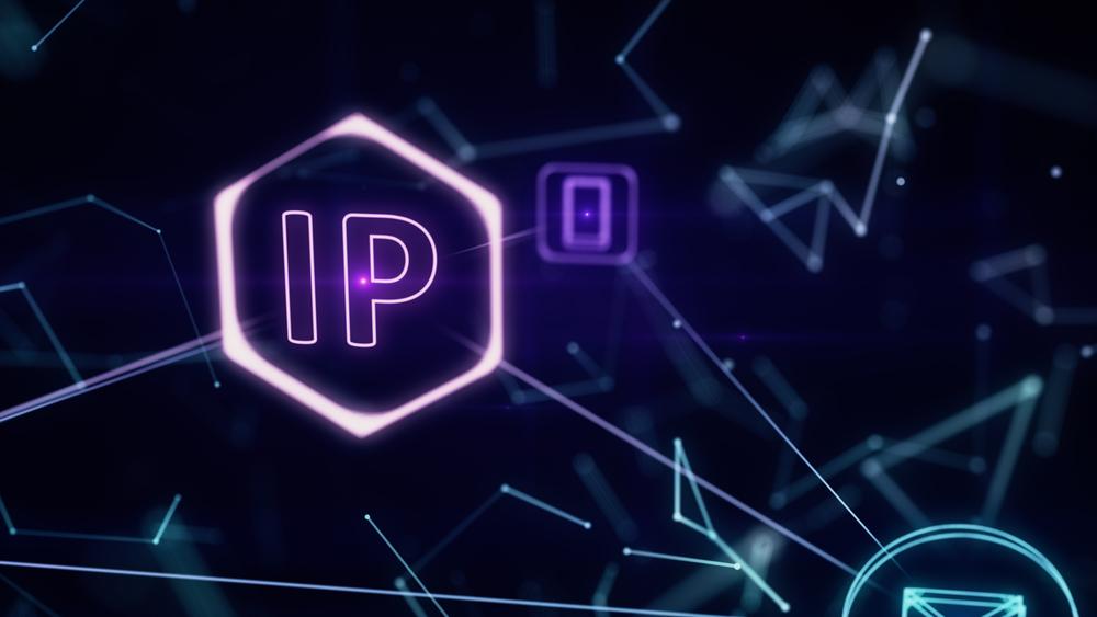 Stały adres IP