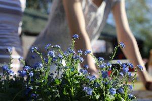 Kwiaty i ludzie