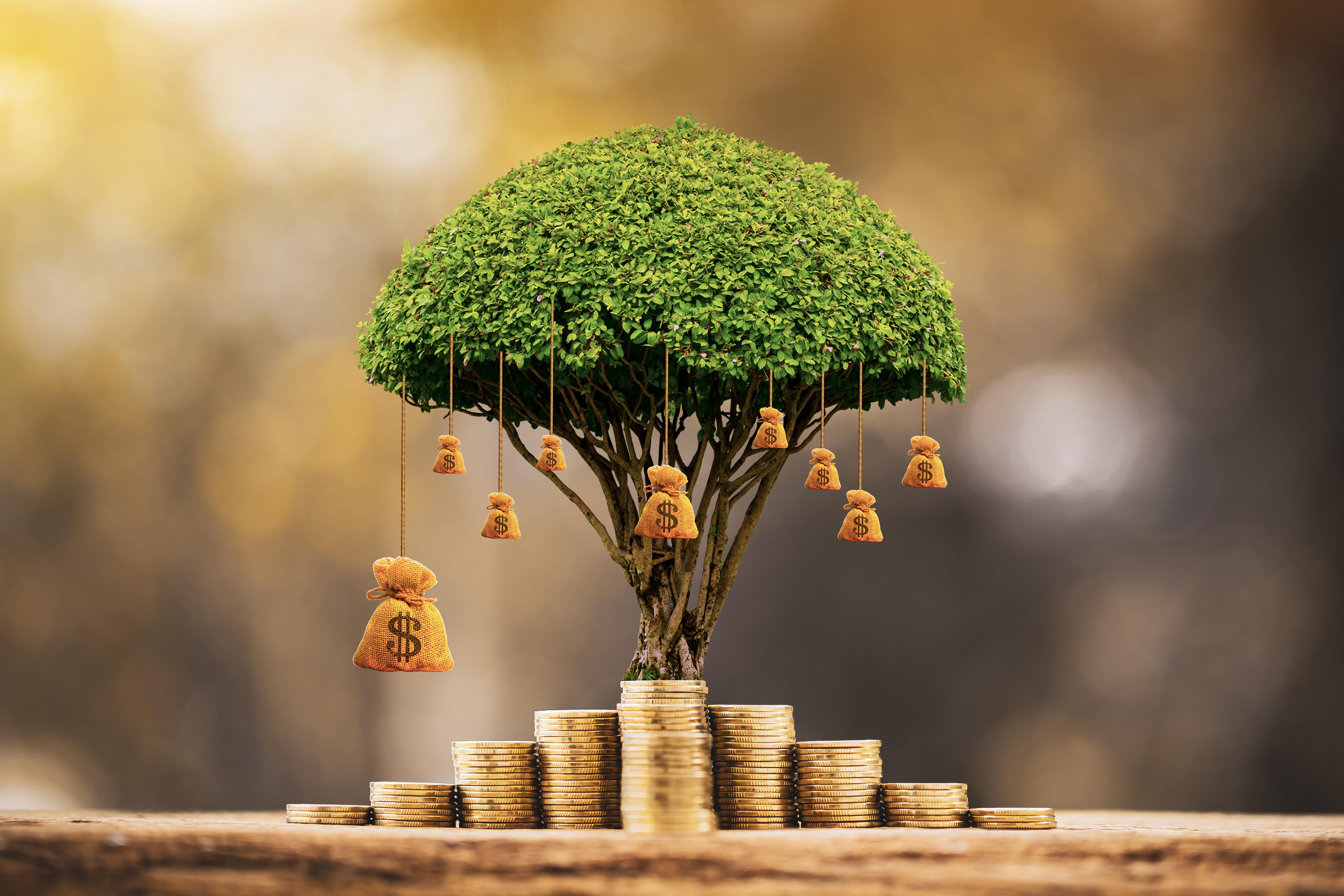 Rosnące środki w funduszu inwestycyjnym